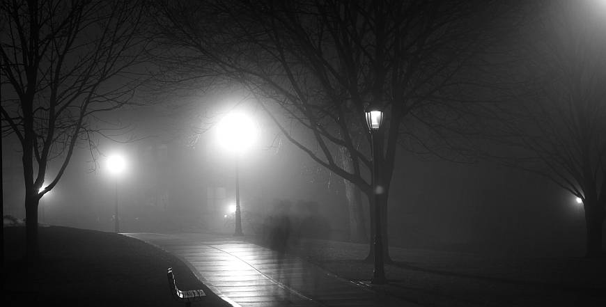 Foggy Night (Photo by Jesse Bowser)